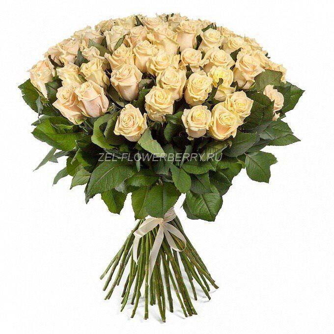 Солнечногорск цветы с доставкой купить цветы статьи